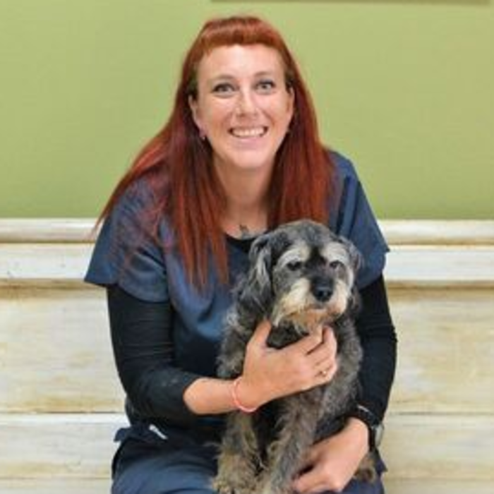 Rebecca, CVA Level III Shelter Coordinator, Veterinary Nurse photo