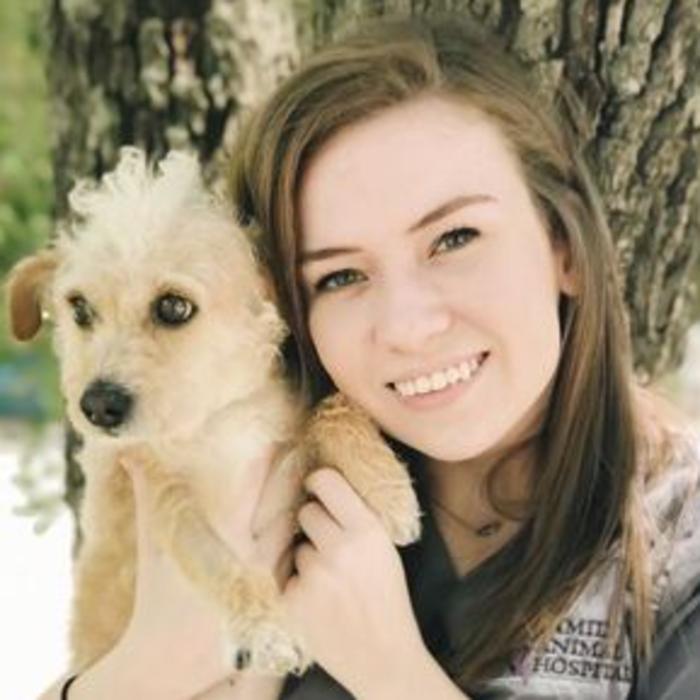 Hailie, CVA Level III Equipment/Inventory Manager, Veterinary Nurse photo